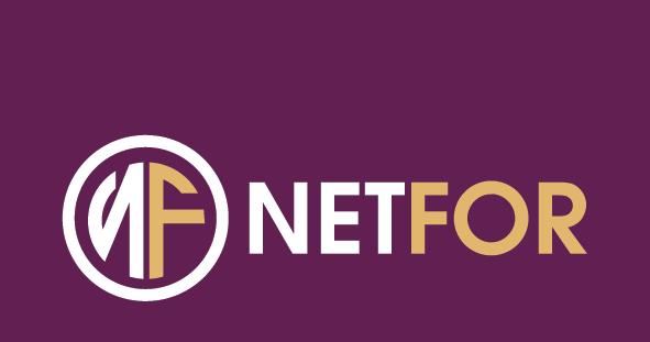 Net-For Dubai'de şirket kurmak